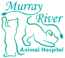 Murray River Animal Hospital
